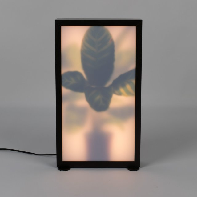 Podna lampa Grow M
