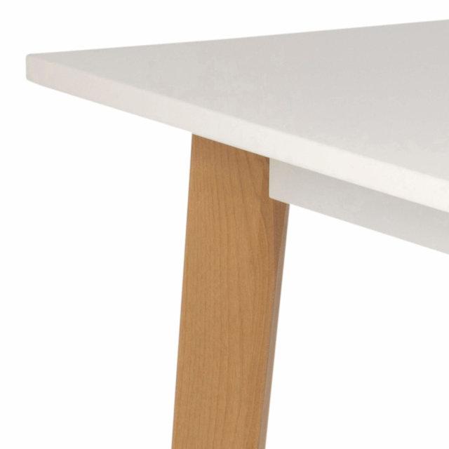 Radni stol Raven