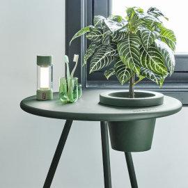 Stolna lampa Tjoepke Envy Green