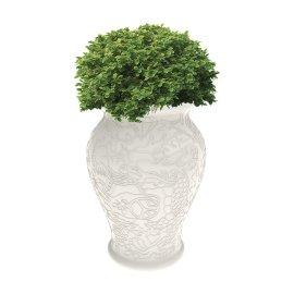 Tegla za biljke Ming White