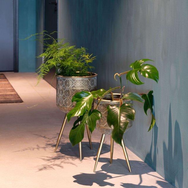 Tegla za biljke Botanique L
